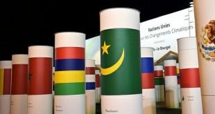COP21 flags
