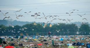 Glastonbury aftermath