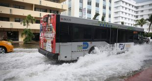 Miami Flood
