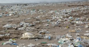 Big Oil's plastic problem