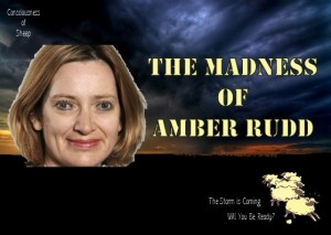 Image of the madness of Amber Rudd