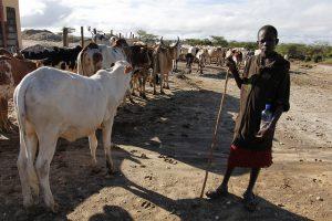 climate-change-in-kenya