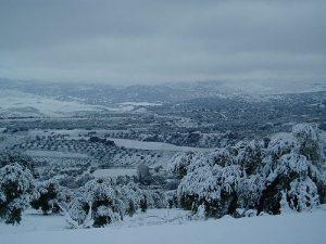 Spanish Snow
