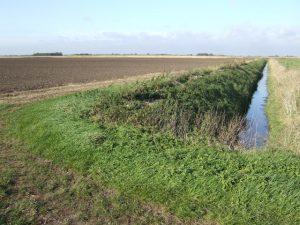 Low-lying farmland