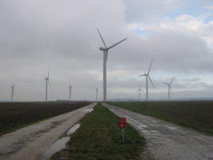 Renewable road to extinction